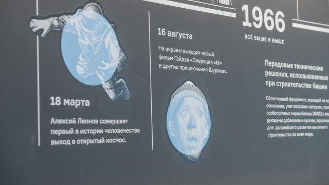 Изображение 9 - дизайн стены выставочной экспозиции