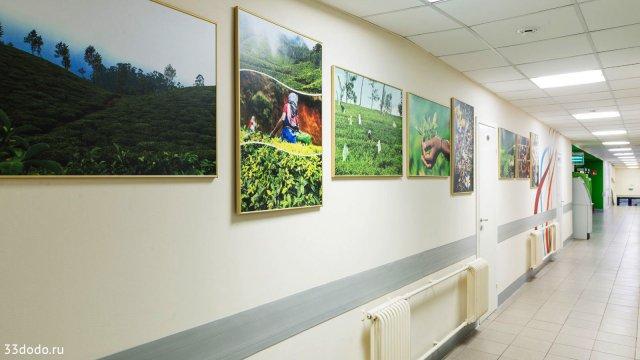 Изображение 15 - дизайн офиса компании МАЙ