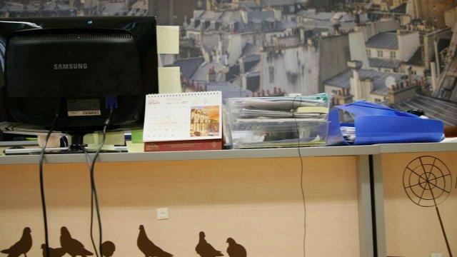 Изображение 3 - декор офиса туристической фирмы
