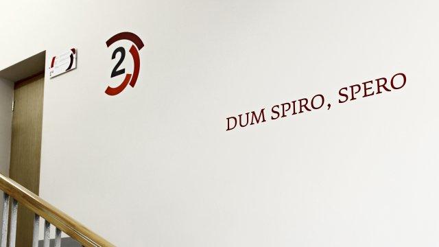 Изображение 7 - оформление стен высшей школы экономики